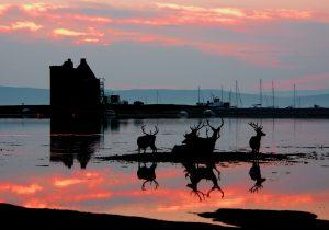 Visit Lochranza - Isle of Arran